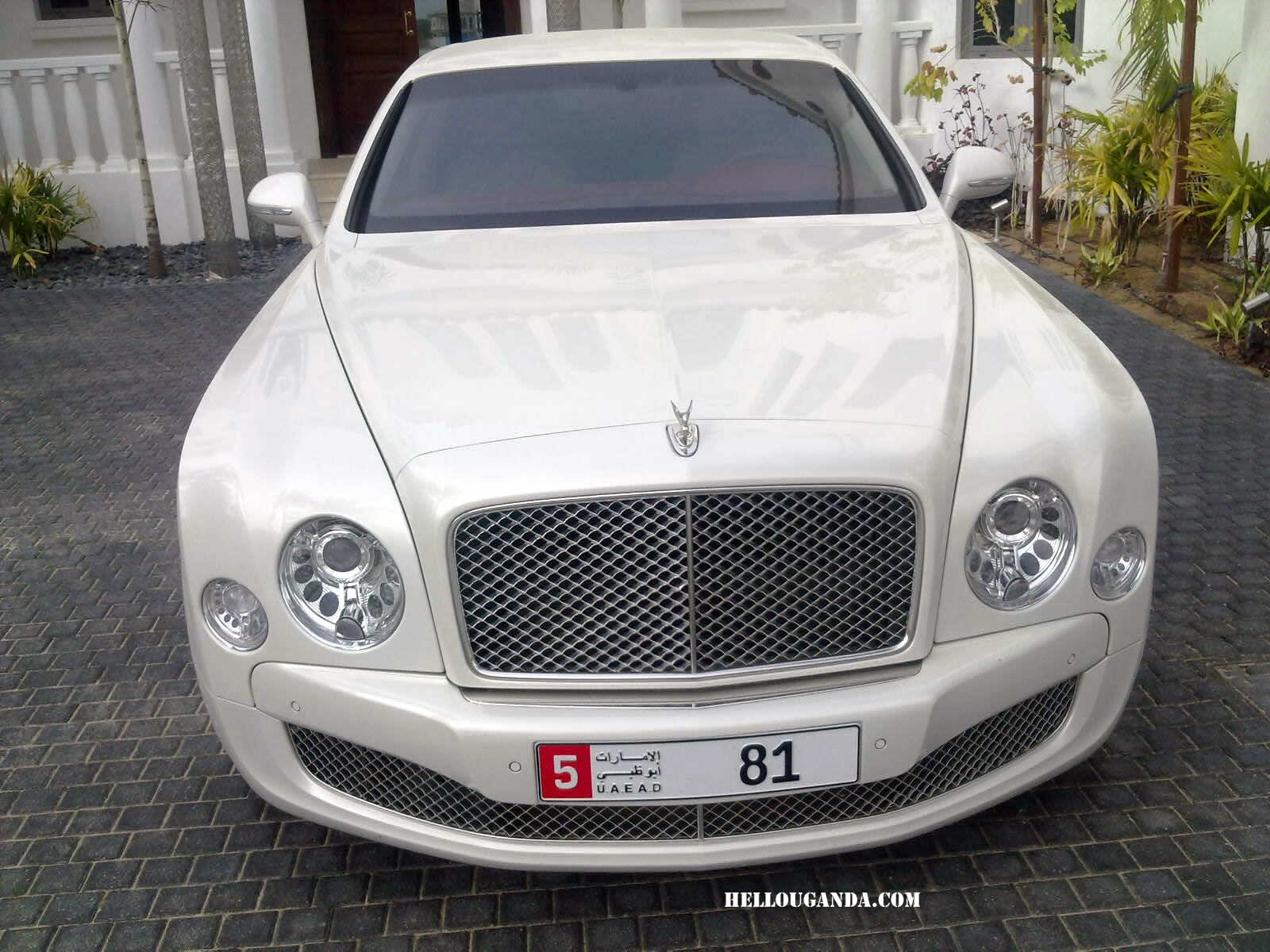 car flying bentley sport aaa for hire new spur luxury rental rent